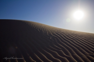 Sun_Dabbled_Dune-AC4x6