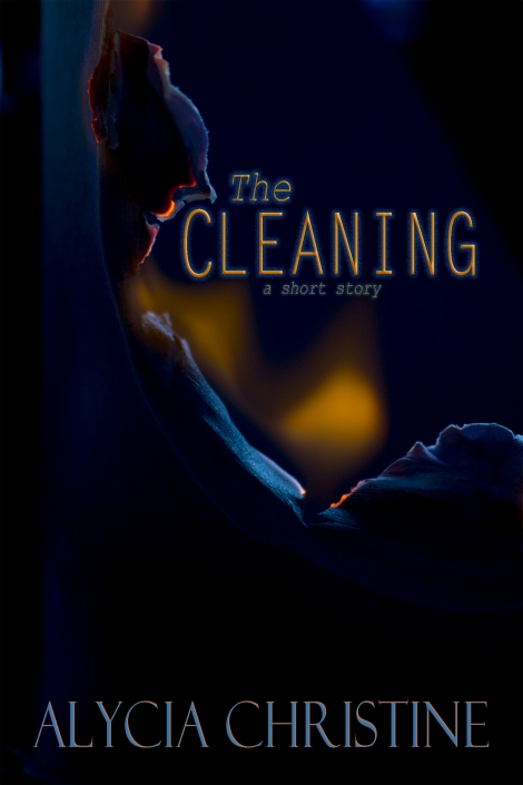 Cleaning_cover-1600x2400